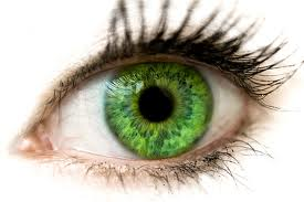 Emerald Eyes Lenses - Coloured Contact Lenses in Delta BC